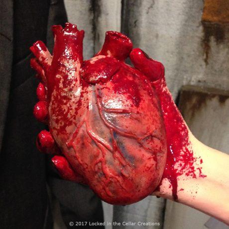 Human Heart in Hand